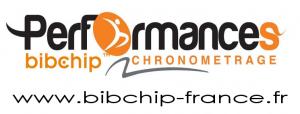 logo-bibchip